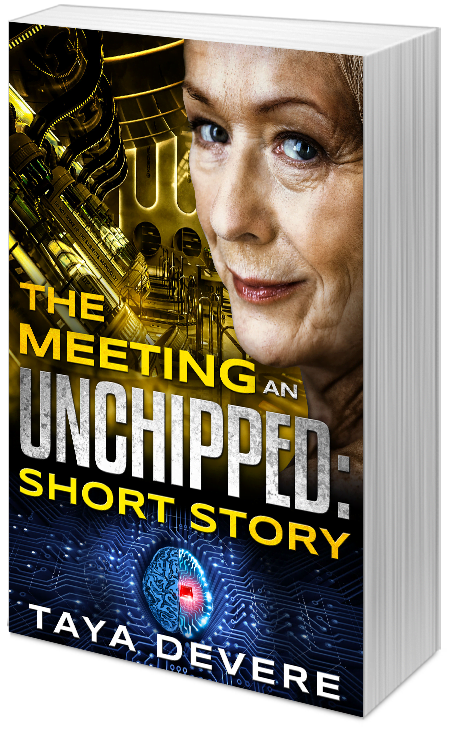 The Meeting: An Unchipped Short Story